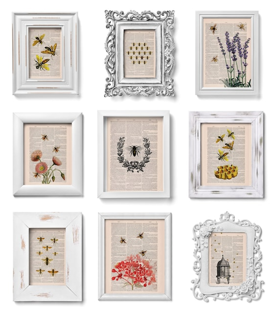 This selection is a Perfect Gift Book prints SALE  for ONLY fifty dollars Bees collection of Prints on Dictionary SET012