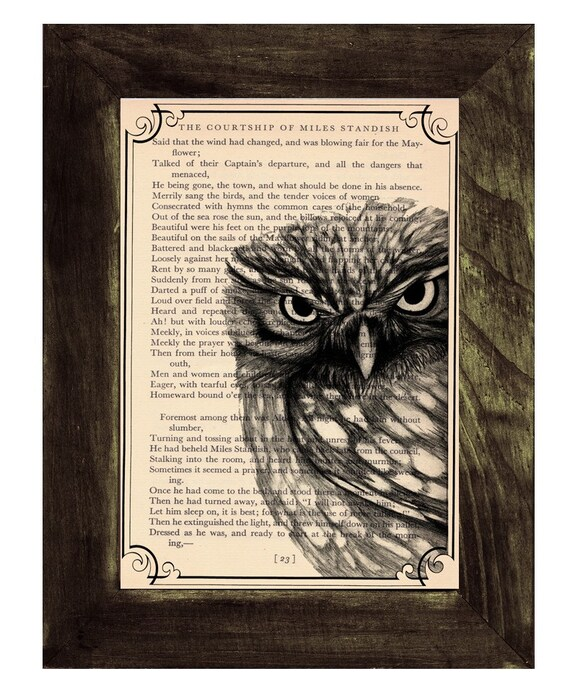 Owl, Wall art, Wall decor,   Vintage Book sheet, Nursery wall art, Prints, Wholesale   ANI030