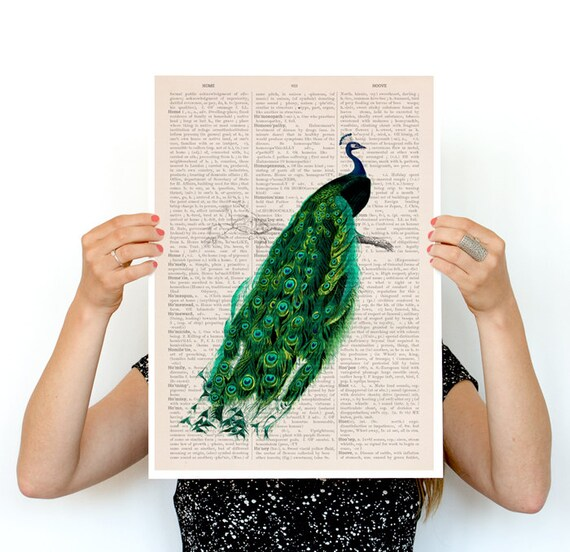 Elegant Peacock poster, Eco friendly art, Wall art, Wall deccor,  poster, Peacock art, Animal ANI148PA3