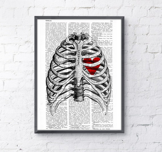 Heart trapped in human rib cage anatomy wall art the best choice for Christmas gifts  SKA019b
