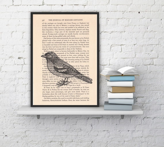 Dictionary page book art print Sparrow Print on Vintage Book altered art dictionary page illustration ANI184