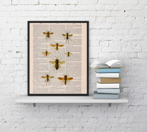 Queen bee Print on Dictionary Book - Butterfly Art on Upcycled Dictionary Book - Wall Art Home Decor BFL115