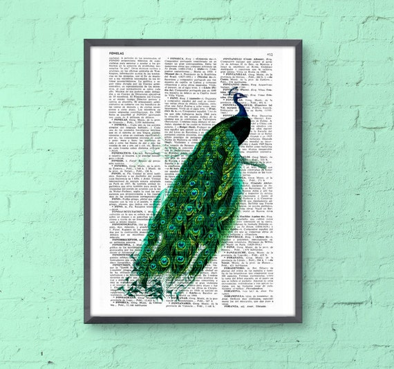 Beautiful Peacock illustration printed on vintage book page perfect for gifts ANI148b