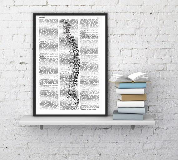 Art print Human anatomy- Skeleton Spine Anatomy Study art  Print, giclee print SKA093