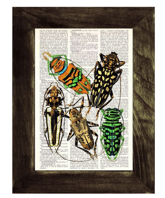 Christmas gifts for mom Beetles Dictionary Book Print - Altered art on upcycled book pages BFL024
