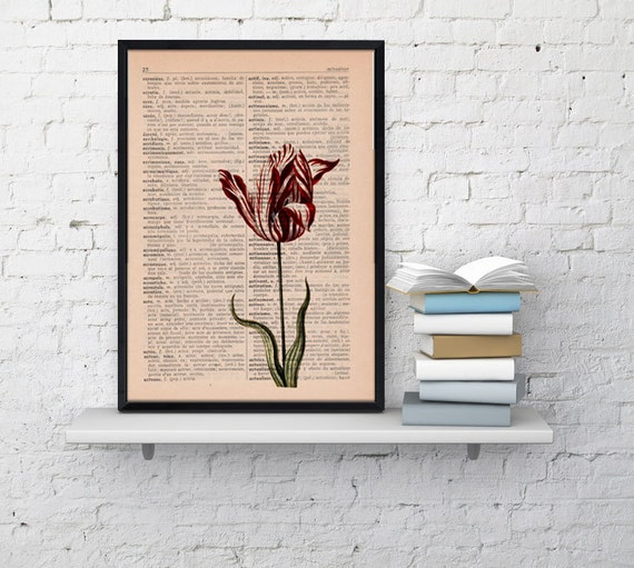 Wall art Vintage Botanical  Illustration Tulip Print on Vintage Book page- Home wall decor BFL058