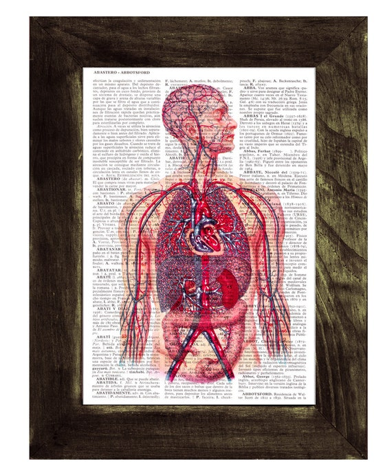 Blood - Human Veins and arteries Circulatory System - Dictionary Book Page Print on Upcycled Book Page SKA028