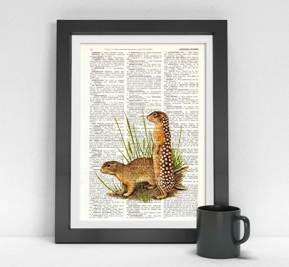 Christmas gifts for her Meerkat, Wall art, Wall decor,   Vintage Book sheet, Nursery wall art, Prints, Meerkat prints,  ANI203