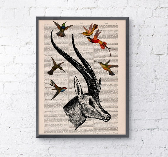 Antelope head with hummingbirds Wall art collage on Upcycled Book page Print Wall decor Art giclee Print bird  ANI205