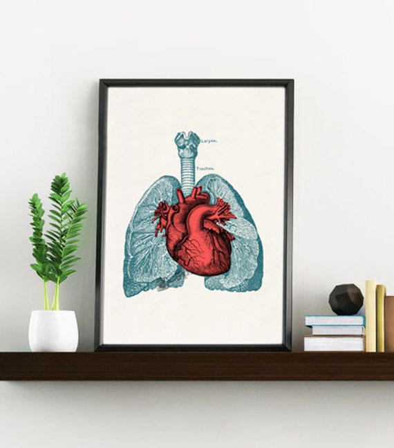 Christmas gifts for mom Heart and Lungs, Anatomical art, Anatomy art, Wall art decor, Gift for Doctor, Medical, Science art,  SKA030WA4