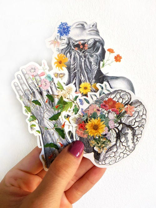 Anatomy stickers set, hand detail, Brain with flowers, laptop ...