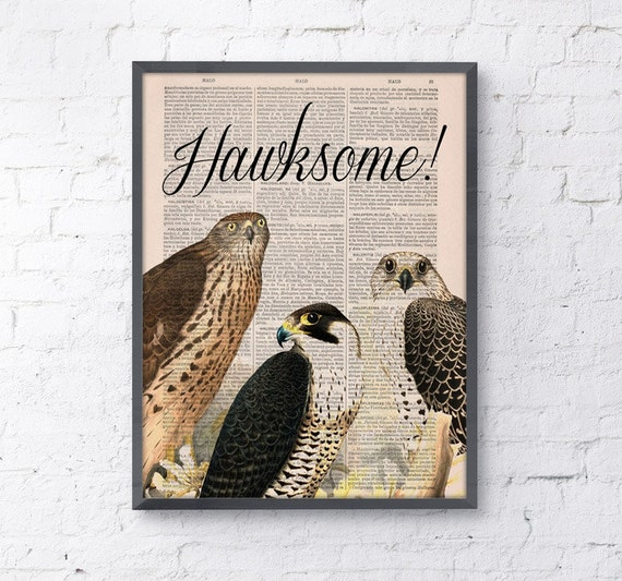 Christmas gifts for her Wall art  Hawksome, Wall art, Wall decor,   Vintage Book sheet, Nursery wall art, Prints, Funny art,  ANI196