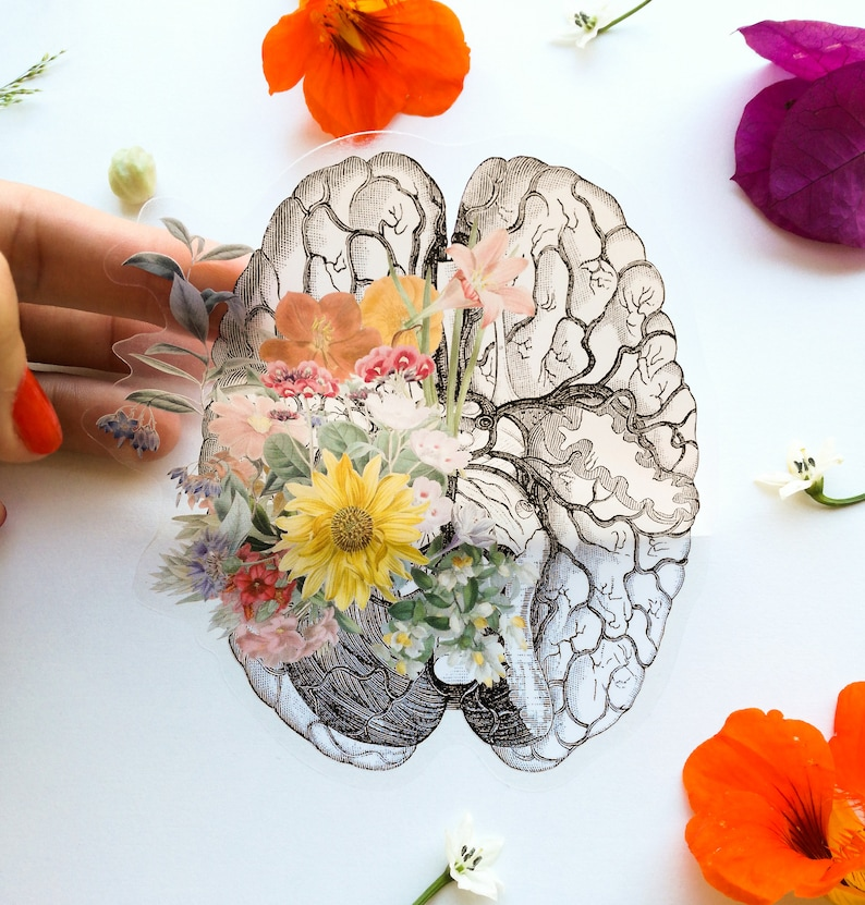 Transparent Brain sticker:  Brain with flowers perfect for image 0