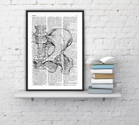 Wall Art Pelvis bones - Skeleton Anatomy Study art Print, science print, Pelvis print gift, print, Pelvis bones SKA025