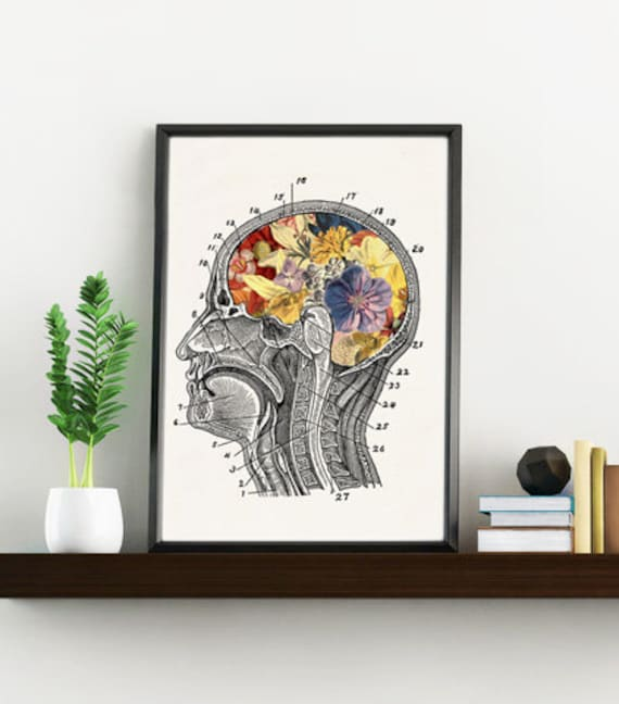 Flowery Brain, Anatomy art, Anatomical art, Wall art, Wall decor, Anatomy, Medical gift, Wholesale, Gift for doctor, doctors gift, SKA053WA4