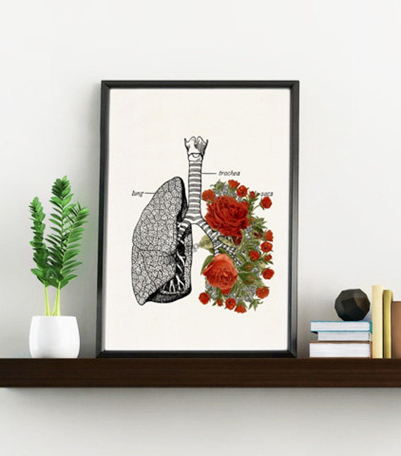 Lungs with Red Roses anatomical wall art SKA064WA4