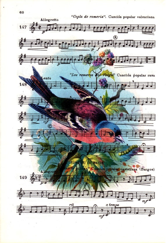 Cute  bird over original music sheet,  Wall art, Wall decor,   Nursery wall art, Prints, Wholesale ANI243