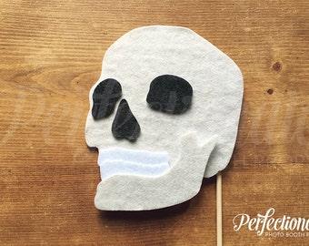 Skull Prop | Human Skull Prop