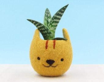 Neko Atsume Cute planter | Succulent gift, cactus pots, Kawaii gift for her, Small succulent pot, Felt succulent planter, Cat lover gift