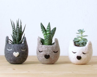 Cat lover gift set for her | Mothers day gift for pet lover, Succulent planter set, housewarming gift, home decor, new home, coworker gift