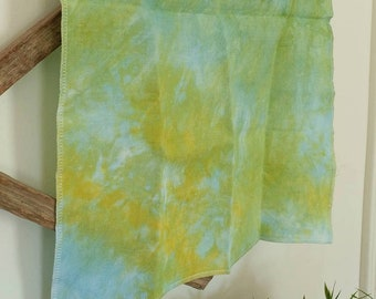 LILY PAD 14 ct. Aida hand-dyed cross stitch fabric count Picture This Plus PTP light blue yellow green