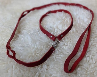 Dainty collar and Long Leather leash