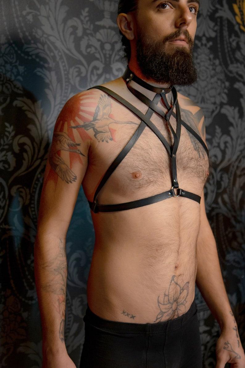The Circe High Collar Harness image 0