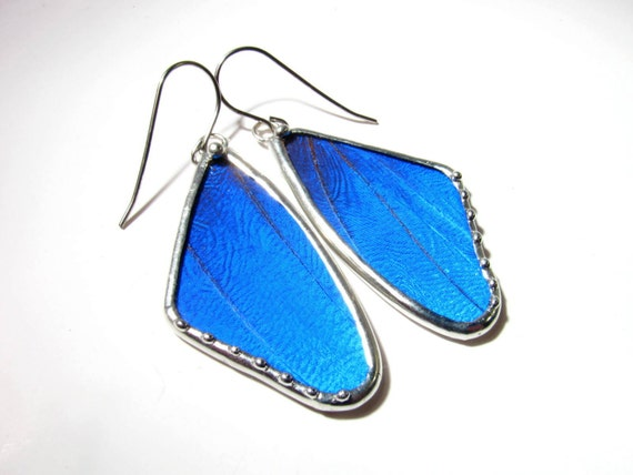 Butterfly Wing / Butterfly Earrings / Real Blue Morpho / Butterfly Jewelry