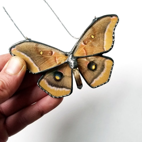Polyphemus Moth / Moth Jewelry / Butterfly Necklace / Blue butterflyNecklace
