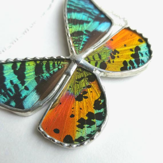 Butterfly Jewelry / Butterfly Necklace / Moth / Butterfly
