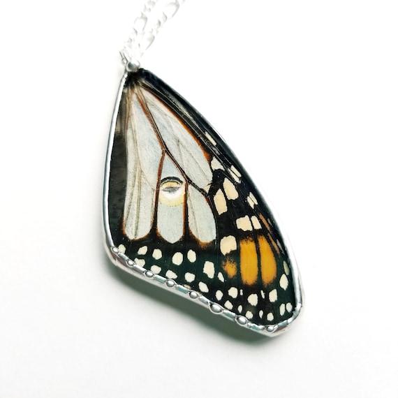 Real Luna Moth / Monarch Butterfly Pendant