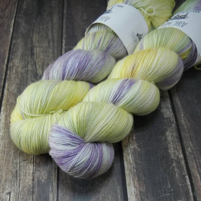 Ghost Plant Fingering Basic Sock Yarn Superwash Merino Wool image 0