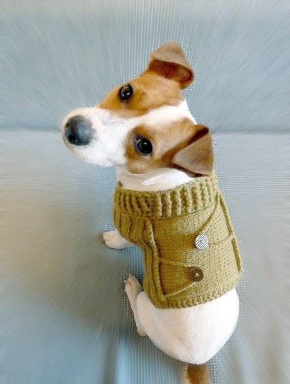 Knitting Pattern Dog Sweater Pattern Knit Dog Sweater Pattern Dog