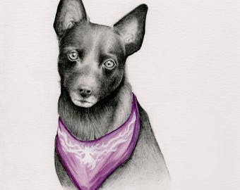 Custom Pet Portrait, Personalized Pet Portrait, Hand Drawn Illustration of Your Dog, Pet Portrait Drawing, One of a Kind Gift for your Pet