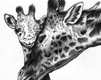Baby Giraffe and Mother Print Hand Drawn Original Illustration