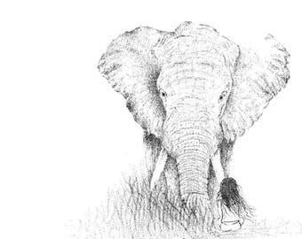For you; Bong Su Elephant illustration art print