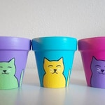 Kitty Planters