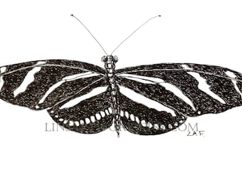 Downloadable Zebra butterfly Print, black and white butterfly print,Pen and Ink digital prints,black and white insect print. butterfly image