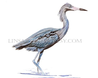 Downloadable Blue Heron Print , Heron bird print, Pen and Ink digital prints, bird image,Blue Heron prints,digital,prints for bird lovers