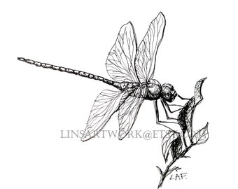 Downloadable Dragonfly Print, Dragonfly print, Pen and Ink Drawing of a dragonfly, bug artwork, pen and ink art, insect prints