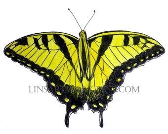 Yellow swallowtail Butterfly, digital print, Swallowtail  butterfly art, insect art, bug art, for butterfly lovers, gossamer wings