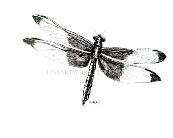 Downloadable Dragonfly Print, Dragonfly  print, Pen and Ink Drawing of a dragonfly , bug artwork, pen and ink art, insect prints