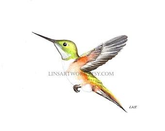 Downloadable Hummingbird Print , bird print, Pen and Ink digital prints, bird image, hummingbird prints,digital,prints for bird lovers