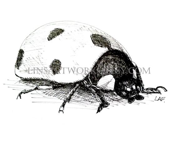 Color Charcoal Home Decor Bug Art Instant Digital Download Drawings Ladybug Print