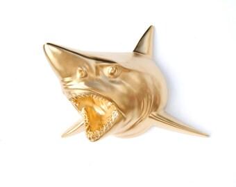 Gold Shark Wall Mount - Faux Taxidermy SH08