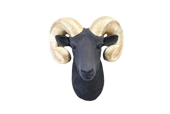 Wall Decor Bighorn A Sheep Huge Sheep Horn Wall Hanging Ram Skull Taxidermy