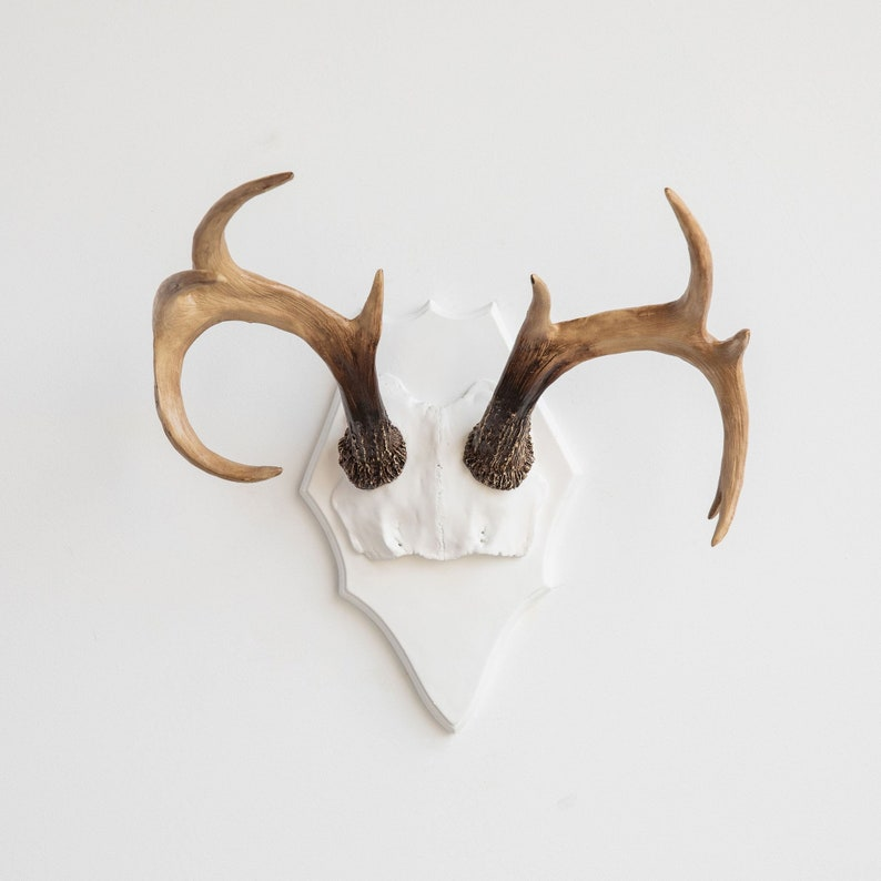 Faux Taxidermy Antler Rack Mount  Wall Decor  White and image 0