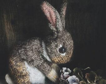 KNITTING PATTERN - Wild Rabbit