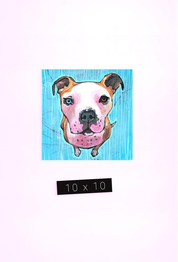 Pet Portrait / 10 x 10