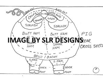 Pig Diagram - Rear Cross Section